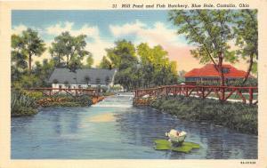Castalia Ohio~Blue Hole~Mill Pond & Fish Hatchery~Huge Water Lily~1940s Linen Pc