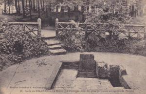 BELLEME (Orne), France, 1900-1910s; La Herse, La Fontaine, Une Des Plus Curie...