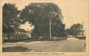 Albertype Columbia Connecticut Looking North 1928 Porter postcard 6556