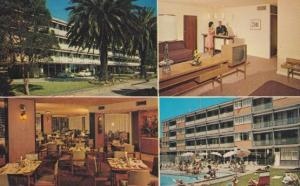 Motel Palm Lake Melbourne Queens Road Hotel Australian Postcard
