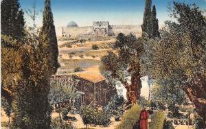 Israel Old Vintage Antique Post Card Jerusalem Garden of Gethsemane Unused