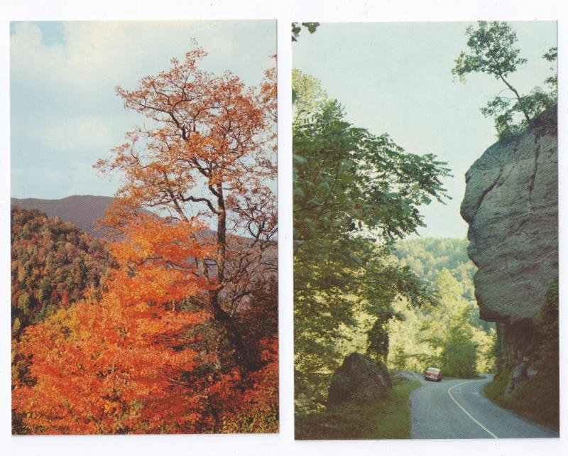 Great Smoky Mountains National Park Views ( 2 cards )