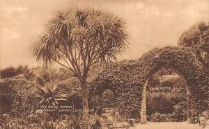 Old Abbey Arches, Tresco Gardens Scilly Isles