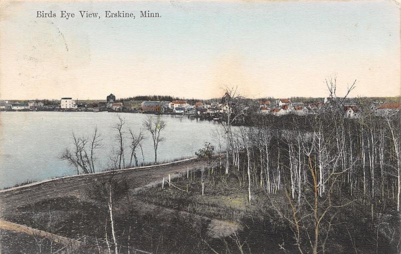 Erskine MN Handcolored: Bird's Eye View~Barren Trees~Homes on Cameron Lake c1910