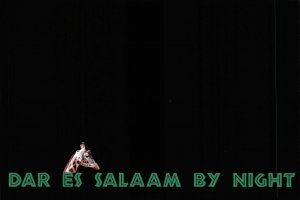 NEW Humor, Novelty, Fun, Africa Postcard, Dar Es Salaam, Tanzania by Night EP9