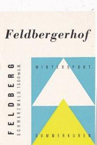 Germany Feldberg Feeldberghof Vintage Luggage Label sk3149