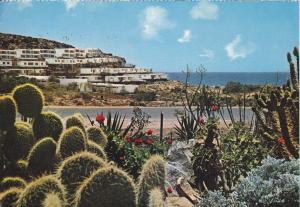 Postal 60319. San Agustin.  Las Palmas de Gran Canaria.