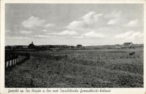netherlands, TER HEIJDE a. ZEE, Israeli Health Colony (1920s) Judaica Postcard
