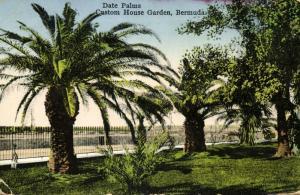 bermuda, Custom House Garden, Date Palms (1931)