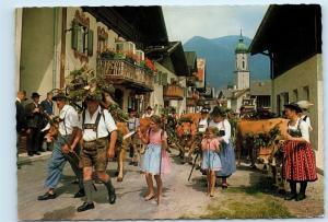 *Germany Almabtrieb Street View Cows Vintage 4x6 Postcard C70