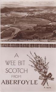 Wee Bottle Of Scotch from Aberfoyle Bottle Real Photo Postcard