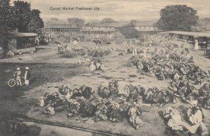 RP: PESHAWAR CITY , Pakistan , 00-10s ; Camel Market