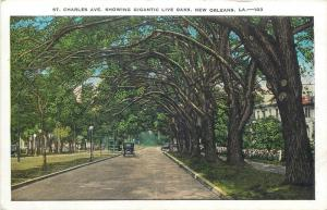 St. Charles Avenue showing gigantic live oaks New Orleans United States