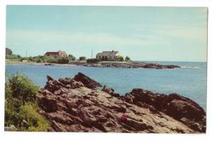 Rocks on the coast of Maine Curteich Chrome