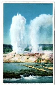 YELLOWSTONE,THE GIANT GEYSER, UPPER GEYSER BASIN, DIVIDED BACK