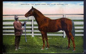 Man-O-War Kentucky Wonder Horse unused 1930's