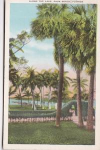 Florida Palm Beach Scene Along The Lake