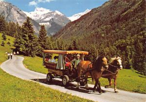 Stellwagenfahrt im Oytal bei Oberstdorf Pferde Horse Carriage Ride Promenade