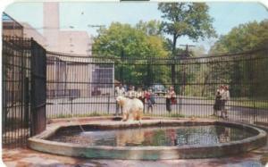 Zoo at Seneca Park, Rochester New York 1956 used chrome P...