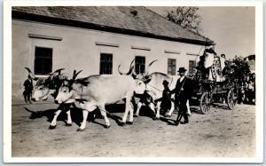 Mez?kövesd, HUNGARY RPPC Real Photo Postcard Ox Cart Street Scene Unused
