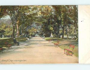 Divided-Back BENCHES & PARK SCENE Albany New York NY r8170