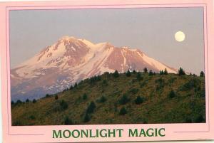 Old Vintage Postcards Moonlight Magic Mt Shasta CA # 2050A