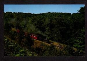 WI Riverside Great Northern Railroad Train WISCONSIN DELLS Postcard Hyde Park