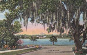 Florida Lakeland View Of Lake Morton
