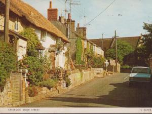 Chideock Duck Street Postcard