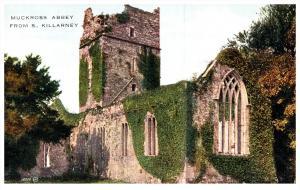 Ireland  Killarney   Muckross Abbey from South Killarney