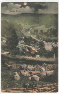 Wiltshire; Limpley Stoke PPC By R Wilkinson, 1905, To Mr Woodbridge, Elstree