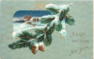 New Year~Pine Cones~Snowy Evergreen Branch~Gold Star~Cottage~Night~Emboss~TUCK