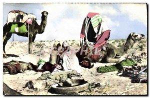 Modern Postcard Camp Camel nomads