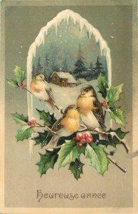 Early embossed greetings postcard shamrock souvenir heureuse annee