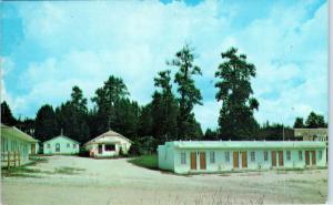 CUSTER, SD South Dakota   CITY VIEW MOTEL   c1960s   Roadside   Postcard