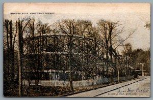 Postcard Brandywine Springs DE 1907 Toboggan Slide Roller Coaster Amusement Park