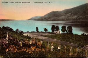 New York Canandaigua Granger's Point and The Whaleback Handcolored Alber...