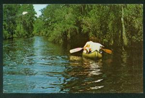 Okefenokee Refuge Suwanee Canal River Canoe Folkston Georgia Postcard