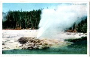 YELLOWSTONE, MORTAR GEYSER, DIVIDED BACK