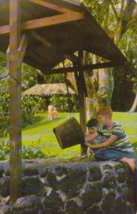 Hawaii Waioli Grass House