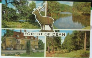 England Forest of Dean Multi-view - unposted marked 1977