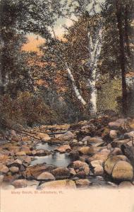 St Johnsbury Vermont~Stony Brook~Birch Trees~Sunset Sky~1905 Postcard