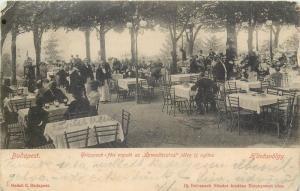 Hungary 1906 Budapest Huvosvolgy Restaurant customers weiters Orvvadaszhaz