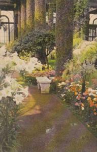 Pennsylvania Kennett Square Longwood Gardens The Main Conservatory