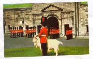 Royal 22e Regiment, Changing of the Guard, at La Citadelle, Quebec, Canada,...