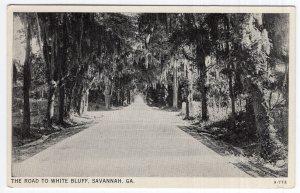 Savannah, Ga, The Road To White Bluff