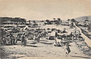 ARABS, HORSES & TENTS IN THE DESERT PHOTO POSTCARD