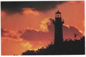 Cape Hatteras Lighthouse in Morning , CAPE HATTERAS , North Carolina , 50-60s