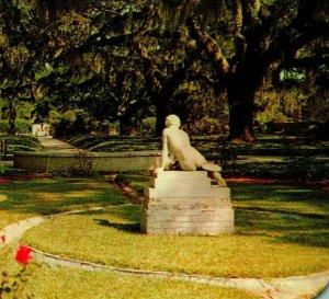 Murrells Ingresso Sc Brookgreen Giardini Hancock Ovale Vtg Cromo Cartolina