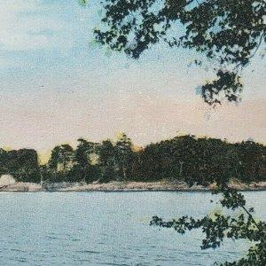 Curtis Negro Island Camden Maine Birdseye View Trees Horizon ME Postcard E88